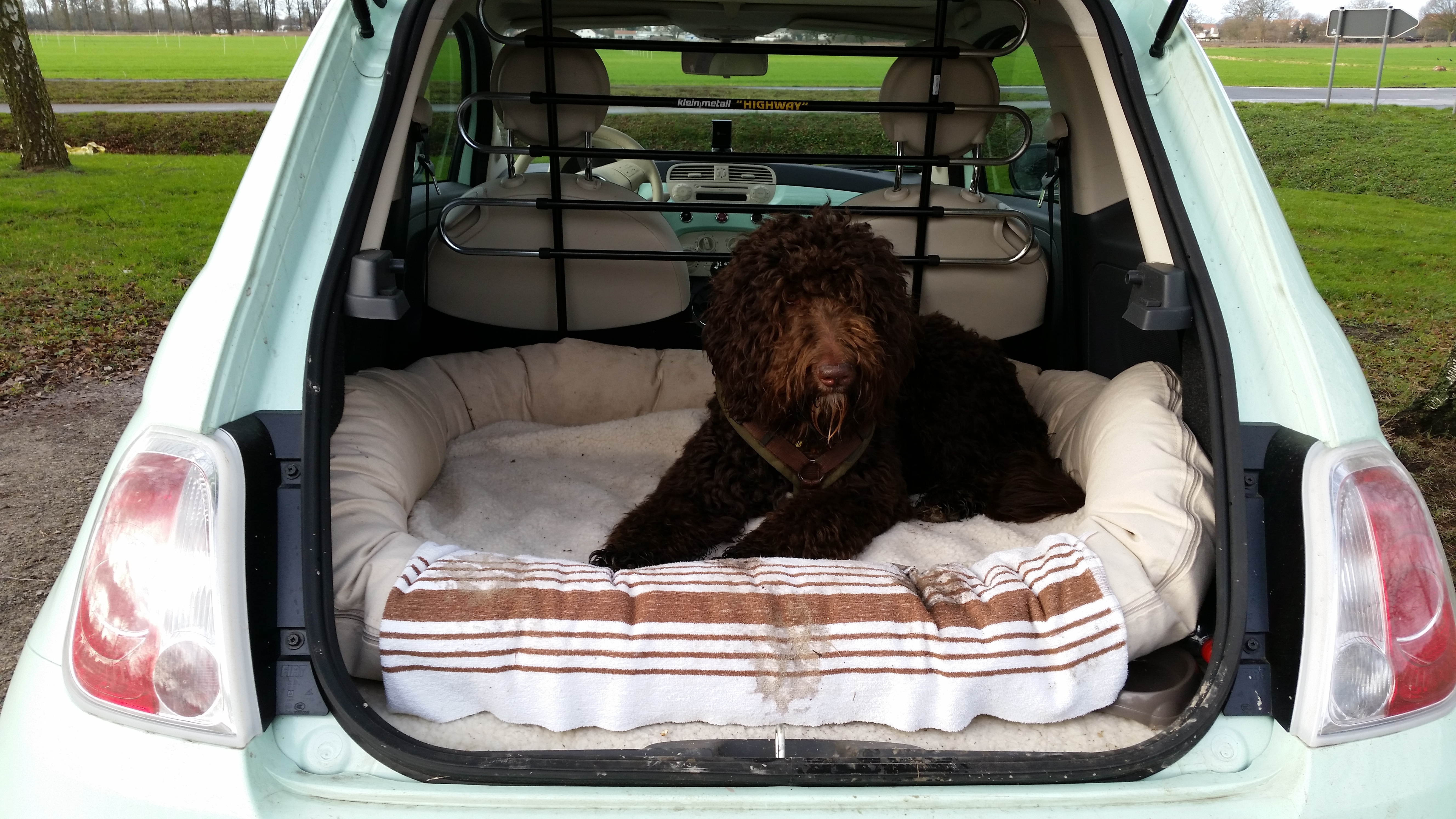 hundetransportbox hundebox sicher mobil mit hund im cabrio. Black Bedroom Furniture Sets. Home Design Ideas