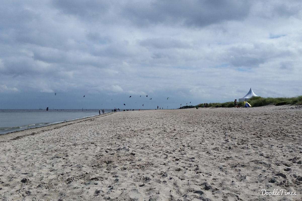 hunde am strand sylt